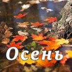 Осень (Каждый год она приходит)